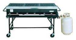 2'x4' Open Grill