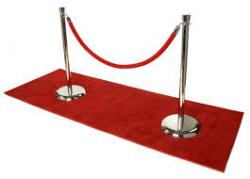 Red Velvet Rope (8ft)